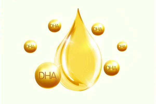 DHA凝胶糖果和DHA藻油凝胶糖果怎么选