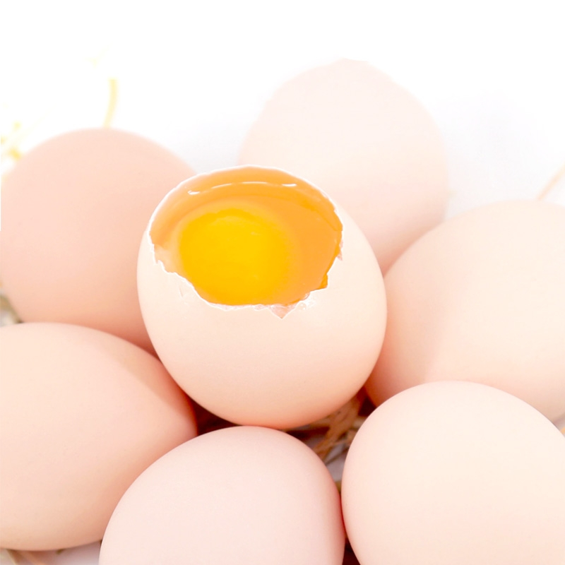 河北DHA鸡蛋